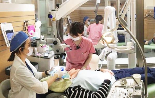 歯科治療について